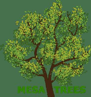 Mesa Trees
